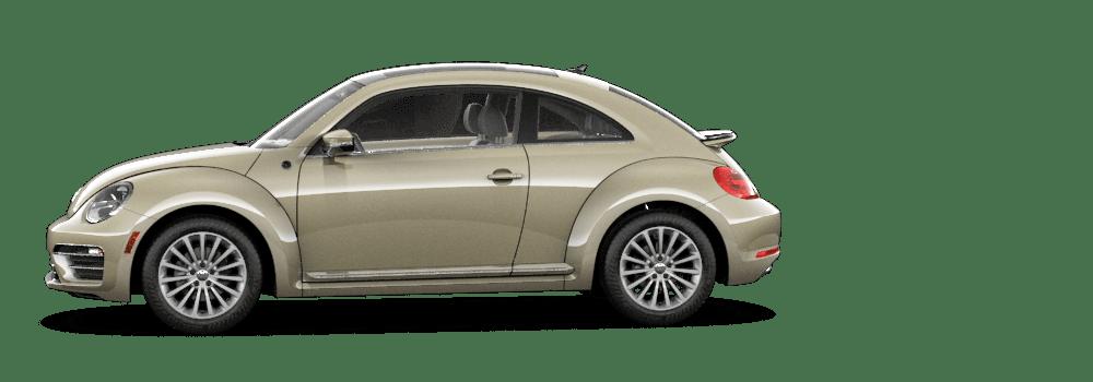 2019-beetle